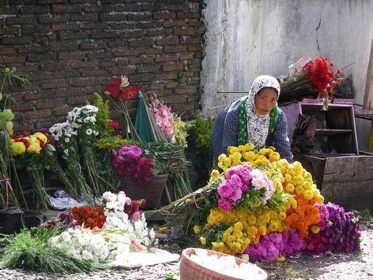 2746392-flower_seller_c_ukirsari-Bandungan